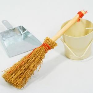 めんどくさがり屋の最近の朝掃除