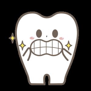 3ヶ月に1度の歯医者定期検診だよー