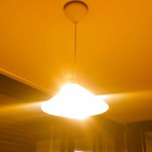 りばいばる#116 暗過ぎる!?オランダの照明