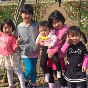 りばいばる#167 日本語補習校 in オランダ