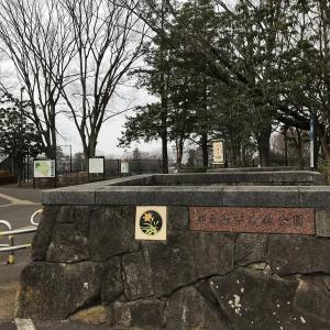 公園探訪ハーフラン 府中の森公園編・野川公園編(2021年週報第8週)