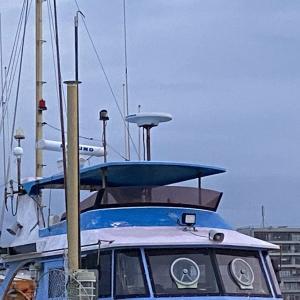 キハダマグロ・カツオ釣り(2021年9月25日・釣り船(茅ヶ崎港ちがさき丸))