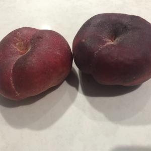バンクーバーで絶品桃見つけました