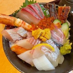 【魚彩 さくら亭】佐伯市城下東町・素晴らしい日本庭園を見ながら10種類以上の具が入っている海鮮丼を食べてきました♪