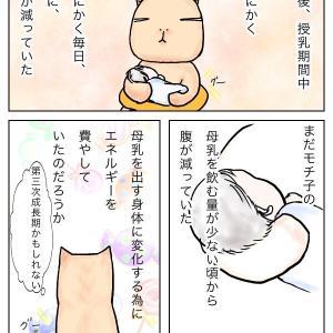 乳腺炎(28)ご飯1