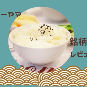 【レビュー】アイリスオーヤマの人気炊飯器「銘柄炊き」レビュー・口コミ