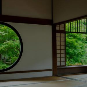 日蓮大聖人様が顕された御本尊様は、どの御本尊様も尊く有り難いのではないのでしょうか?