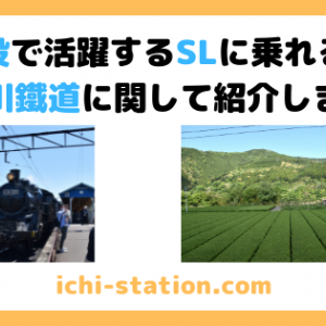 現役で活躍するSLに乗れる、大井川鐵道に関して紹介します!