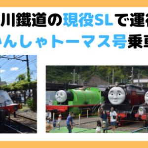【トーマス号】大井川鐵道の現役SLで運行! きかんしゃトーマス号乗車記