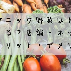 オーガニック野菜はどこで購入する?店舗・ネット購入のメリット・デメリット
