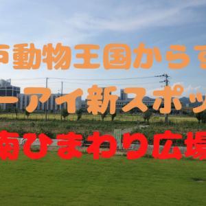 【2021年8月OPEN予定】神戸動物王国周辺の新スポット「南ひまわり広場」|デート・ファミリーにおすすめ!