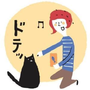 「おひとり猫」は寂しくない!?