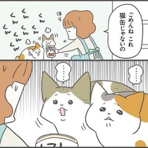 愛猫を「なでたとき」のしぐさでわかる本音