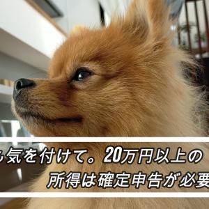 副業でも気を付けて。20万円以上の所得は確定申告が必要です。