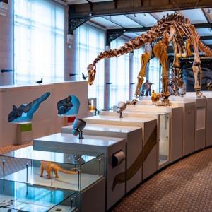 【最新】2021全国の恐竜展、恐竜イベントのまとめ(随時更新)