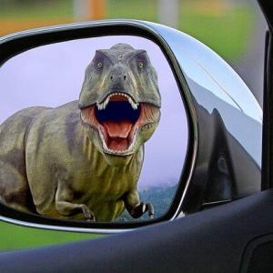 恐竜博物館周辺のホテル・観光スポット特集