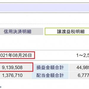 今年の株式譲渡益税としての納税額が900万円を超えました。