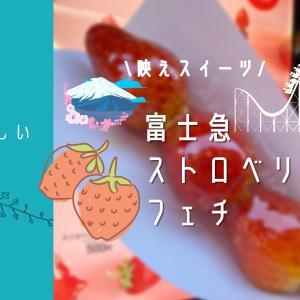 【富士急ハイランド】で楽しむ韓国グルメ|ストロベリーフェチが新登場