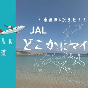 【JALどこかにマイル】ついに出た!那覇宮古石垣函館の4択チャンス