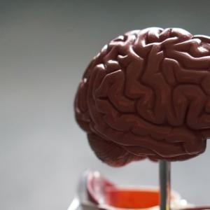 インド株コロナは従来株と症状が違う模様 肺や嗅覚は大丈夫でも脳への影響や手足切断など