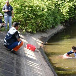 ため池に落ちたときは「浮いて、待て」  [439992976]