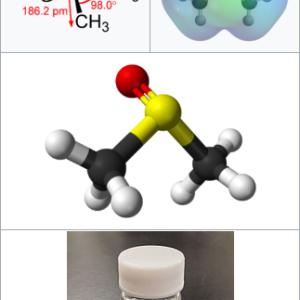 Q&A:DNAとか酵素とかは、どんな状態の物質なの?他