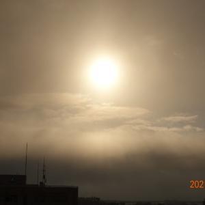 3月7日(日)今日の朝日、今日は何の日??