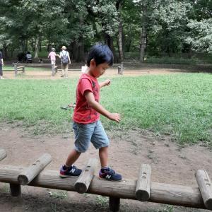野川公園で無料の図鑑を使って生き物観察☆