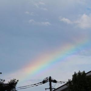 途切れた虹