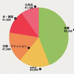 【6月】お小遣い使用状況 中間報告