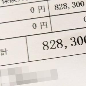 【83万円】歯列矯正治療費お支払い…!過去最高額のクレカ決済!