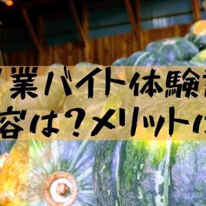 【農業アルバイト】大学生の夏休みに北海道で泊まり込みはきつい?