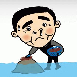 【厳寒の海の恵み】「ふのり」の味噌汁は最高です!