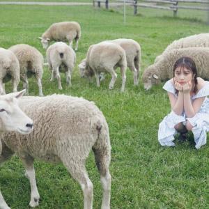 【大特集 与田祐希】WHITE graph 007 8月4日発売【ヤギや羊とたわむれる与田ちゃん】