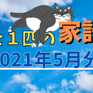 3人と猫1匹の家計簿【2021年5月分】コアラマットレスは最高です!