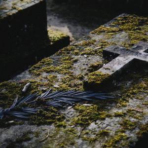 ミラン・リーズル『死後世界の探究』新評論、1997年 超心理学で死後の世界を読み解く!