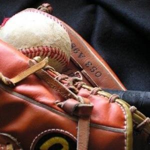 【プロ野球】激震スクープ 河野太郎氏「6球団増設、3リーグ制移行」を提唱か