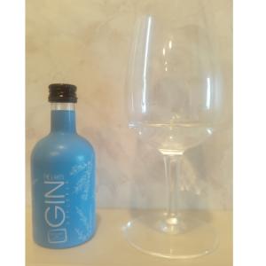 GIN(1)THE LAKES GIN EXPLORER