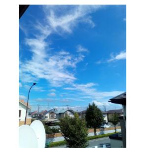 こんなに天気のいい日に在宅勤務なんて・・・