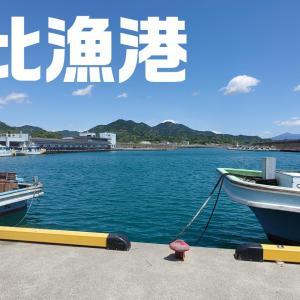 【由比漁港~サビキ釣りにおすすめ~】アクセス方法やトイレ事情まとめ