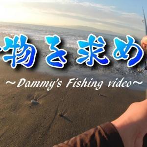 【静岡県内サーフ】青物を求めて。おじさんは奮闘する。