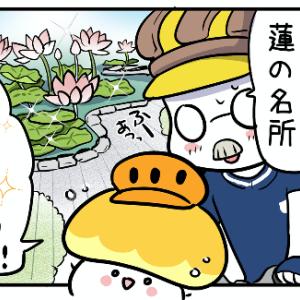 キノコヘルメットちゃん(15)蓮の花を見に