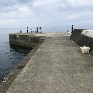 2021年 堤防と磯からの実釣レポート付き 神奈川県・米神漁港の釣り場紹介と駐車場