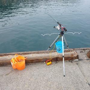乙浜港でサビキ釣りをやりにいった。