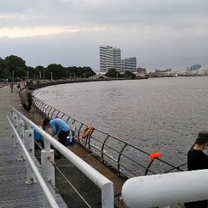 横浜アジングで巡回