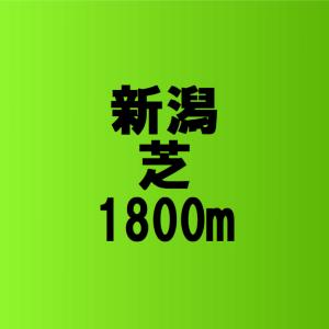 新潟競馬場 芝1800mの特徴 – 弥彦特別や三面川特別で狙うべき馬の探し方