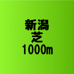 新潟芝1000の傾向と特徴 –  アイビスサマーダッシュで狙うべき馬の探し方
