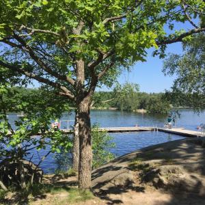 今年初の湖水浴