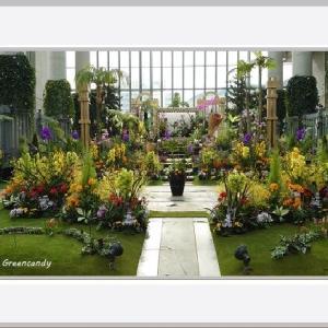 奇跡の星の植物館(その1)