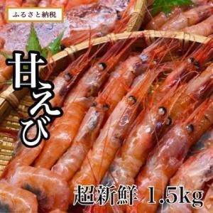 甘えび 1.5kg(訳あり)【福井県 坂井市】